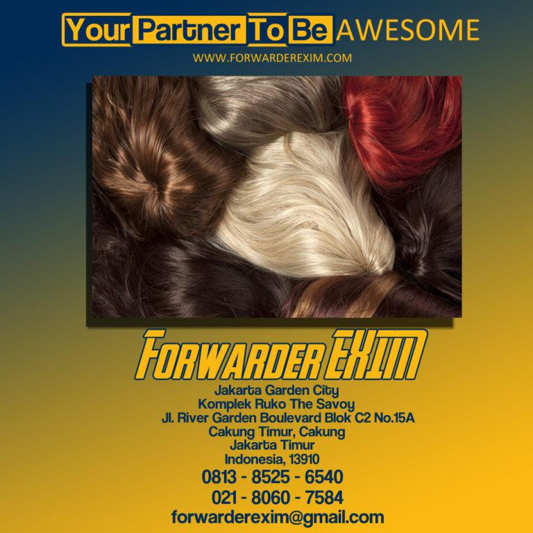 Forwarder EXIM   Jasa Import Rambut Palsu